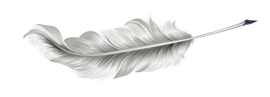 quill picture